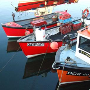 Boats in Dunbar harbour