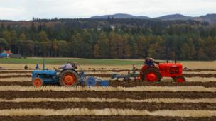 Tractors ploughing a field
