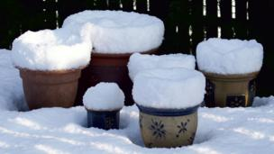 Plant pots covered in snow