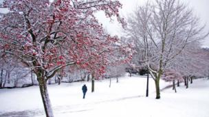 Pontypool Park