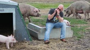 Mark Hayward, Suffolk pig farmer