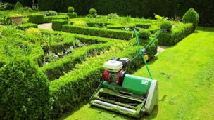 Lawnmower in garden