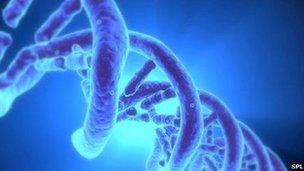dna mapping for cancer patients bbc news
