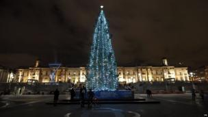 Christmas tree in Trafalgar Square, London.