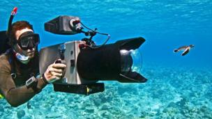 A cameraman films a baby turtle swimming underwater
