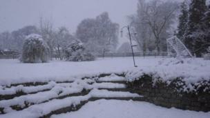 Scene of a snowy garden