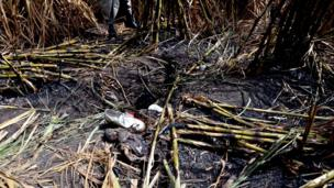 Personal belongings in a sugar cane field after a balloon crash (26/02/13)