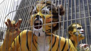 Animal rights protestors in tiger facepaint behind a fence