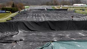 Frost on covers of Cheltenham race course