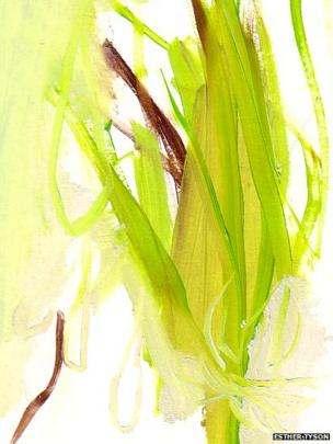 Eel Grass at Studland by Esther Tyson