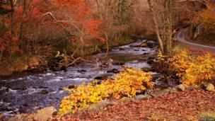 Autumn in Llanbedr beside the river Artro. Photo: Eddie Evans on the BBC Wales Nature Flickr group