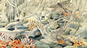 Stoney shore by Elsi Eldridge, 1959, Aberystwyth University School of Art Collection
