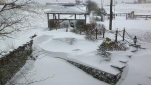 Snow-covered garden. Photo: Alisha Rayson