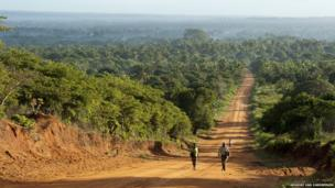 The dusty road to Zavora, Inhambane Province, Mozambique