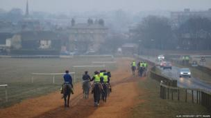 Horses make their way back down to the bottom of Warren Hill in Newmarket