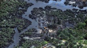 Vegetation devastated by oil spills in Nigeria's Niger Delta region in a photo released on 5 April 2013