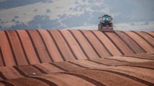 Farmer ploughing fields