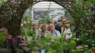 The Hardy Plant Society at the Chelsea Flower Show