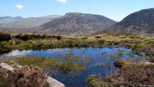 Mourne Mountains - by William Carville