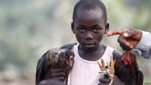 Congolese child arrives in Bundibugyo, Uganda carrying chickens - Tuesday 16 July 2013