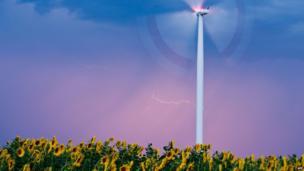 A strike of lightning illuminates the sky behind a wind turbine above a field of sunflowers near Sieversdorf, Germany, on 8 August, 2013.