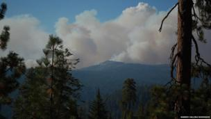 Smoke above hills with trees in the foreground. Photo: Narseo Vallina Rodriguez.
