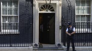 Larry the cat outside Number 10 Downing Street (30 August 2013)