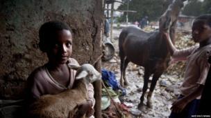 Children with their animals