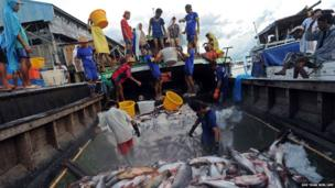 Workers unload fish from a boat at a jetty near a fish market in Yangon