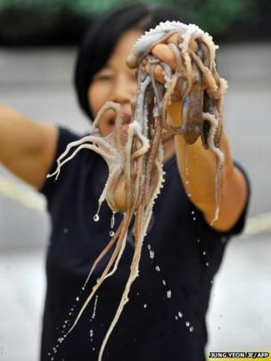 A South Korean woman hold up live octopus during an event to promote a local food festival in Seoul