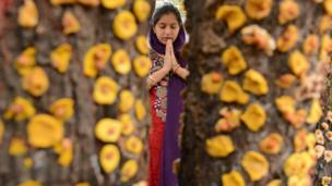 An Indian Hindu devotee prays in front of a ber tree, on the occasion of Maha Laxmi Vrat outside a Shiv Temple in Amritsar.