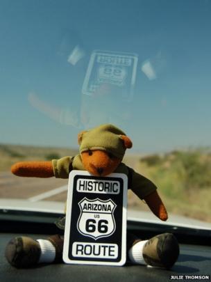 Teddy on dashboard
