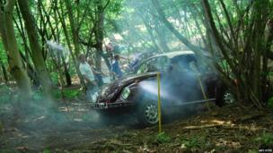VW Beatle in woodland
