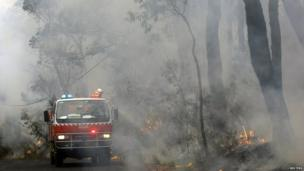 Rural Fire Service firefighters spray water on fire near home in the Blue Mountains suburb of Faulconbridge