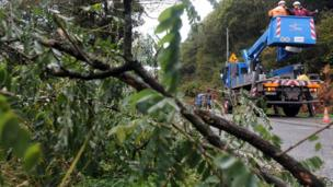 Workers in France remove fallen branches from a road in La Roche-Maurice.