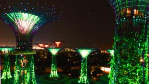 'Supertrees' lightshow in Singapore.