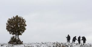 Workers plant trees on a hill just east of Skopje, Macedonia
