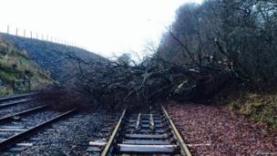 A tree blocking the rail line at Gartshore, Dunbartonshire.