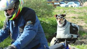 David Perrie of Barrhead was out for a run to Lochgoilhead when he came across this biker and pillion passenger at the Rest and be Thankful. He says the little dog eagerly awaited his owner putting on his goggles.