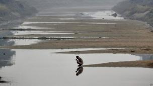 An Indian man brushes his teeth as he sits near the water of an irrigation canal on a foggy morning on the outskirts of the eastern Indian city of Bhubaneswar, India,