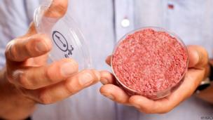 A burger made from cultured beef, which has been developed by Professor Mark Post of Maastricht University in the Netherlands is shown to the media during a press conference on August 5, 2013 in London, England.