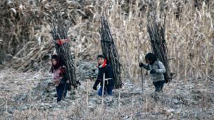 North Korean girls carry firewood on their backs as they walk on the banks of Yalu River, some 60 miles (100 km) from the North Korean town of Sinuiju, opposite the Chinese border city of Dandong