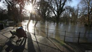 A person sits on a bench overlooking a flooded area of woodland in sunny weather