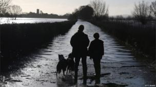 Two people and two dogs stand on a flooded path under clear skies