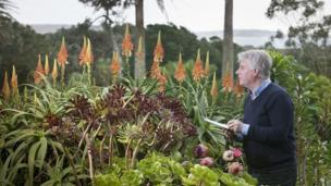 Flower count, Tresco Abbey Gardens, January 2014