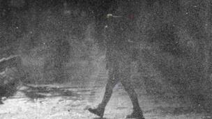 A woman walks through a blizzard in Chicago, Ill (6 Jan 2014)