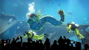 Divers carry a man-made dragon, as part of Chinese New Year dragon blessings, wishing all their guests boundless energy in the Year of the Horse, at the South East Asia Aquarium at Resorts World Sentosa in Singapore