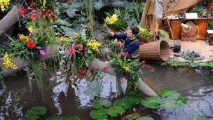 "Horticulturalist Alex De Hoyle arranges plants in the new exhibition ""Orchids"" in the Princess of Wales Conservatory at the Royal Botanic Gardens, Kew"