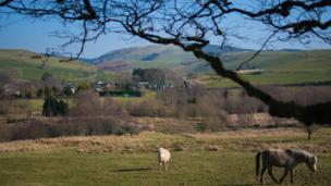 Rural scene - the village of Bontgoch in the Upper Leri valley, Ceredigion - by Elwyn Hammonds