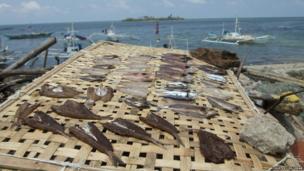 Fish being dried on Bantayan Island
